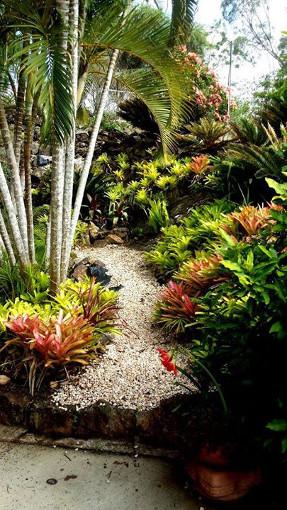 bromeliad_garden_path_stairs